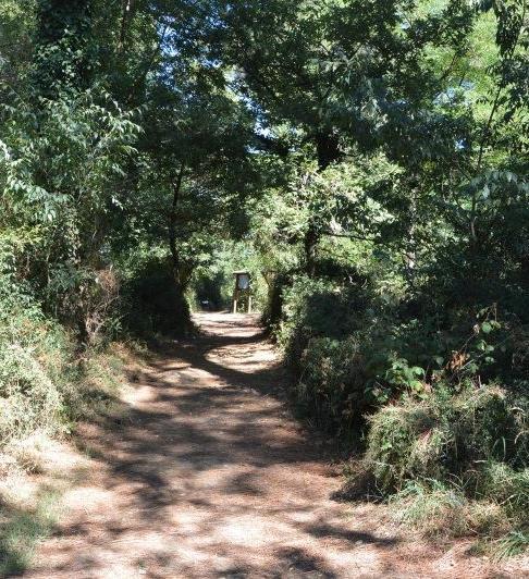 Passeggiate Patrimoniali