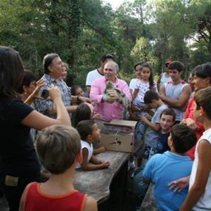 Passeggiate Ecologiche in Pineta